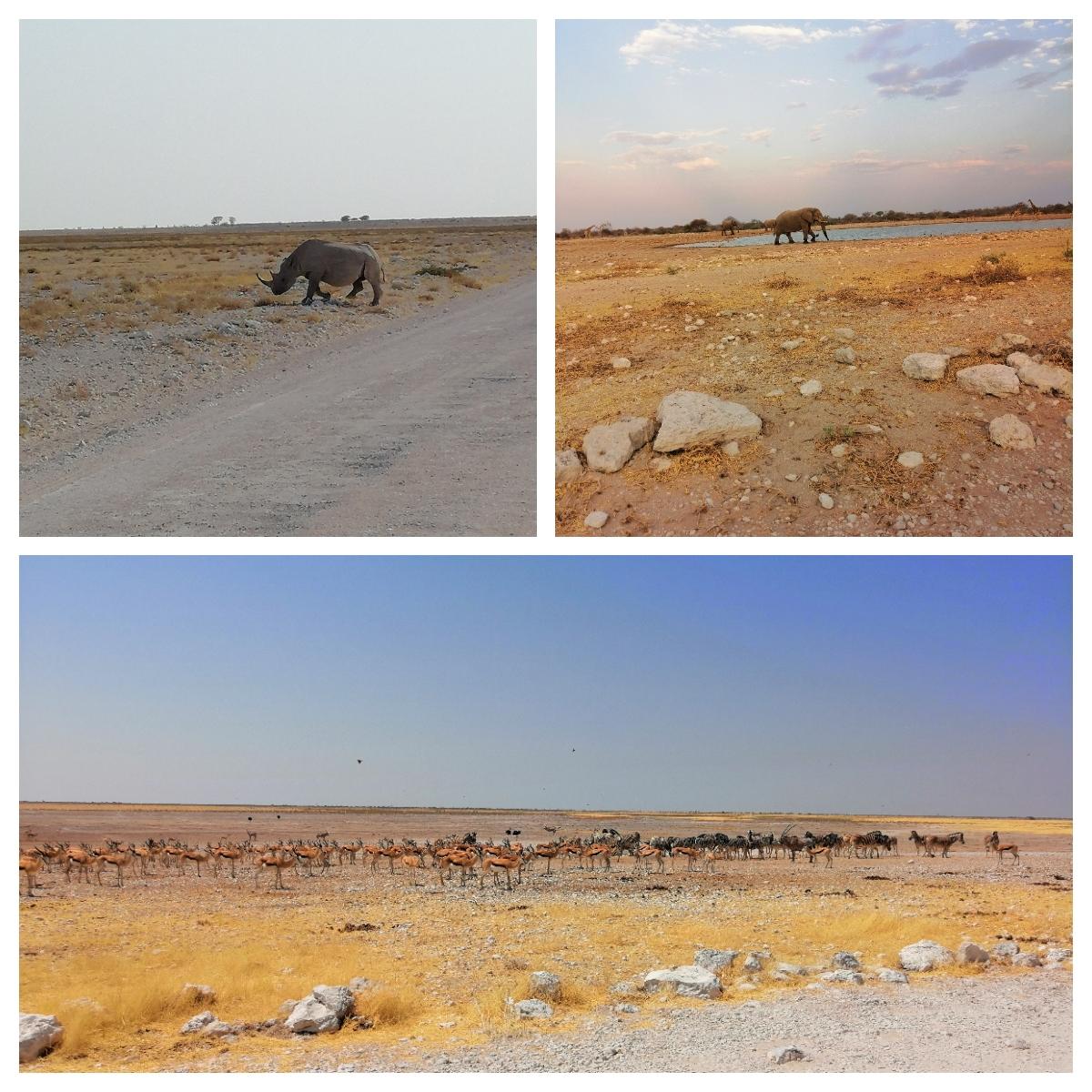 Namibia 2.3